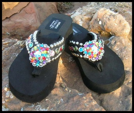 Hollywood Multi Color Flip Flops